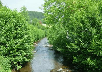 Seminarhaus_Krone_Schenkenzell_Umgebung